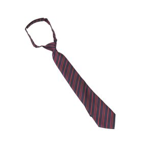 Kingsdale Velcro Tie for Falcon House (red stripe)